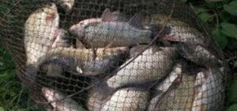 На Волині у березні затримали майже півсотні рибалок-браконьєрів. Відео
