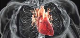 У Волинській обласній лікарні здійснюватимуть пересадки серця