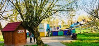 У Луцькому парку відновили щоденну роботу атракціони. Розклад