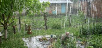 У Любешові пройшла злива з градом розміром із вишню