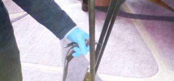 У Волинянина під час обшуку поліцейські знайшли три рушниці