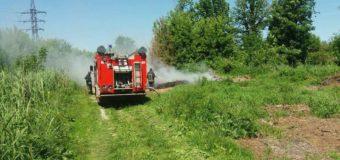 Невідомі спричинили пожежу в луцькому парку. ФОТО