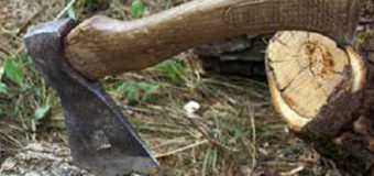На Волині лісоохоронці в засідці відзняли на відео дії трьох лісопорушників