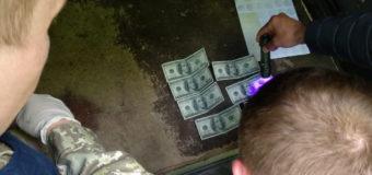 На Волині затримали прикордонника, який разом із спільниками організував канал контрабанди цигарок. ФОТО, ВІДЕО