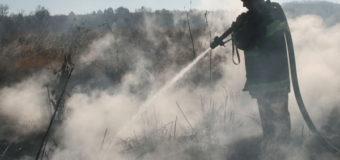 Волинські рятувальники гасили пожежі на торфовищах
