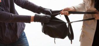 У Луцькому парку зловмисник вирвав з рук у дівчини рюкзак