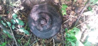 Волиняни виявили 34 вибухонебезпечні предмети