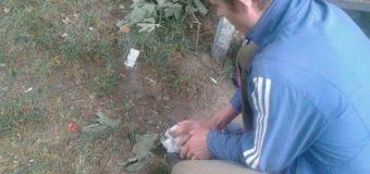 Лучан змусили прибрати лушпиння, яке вони «наплювали» на землю