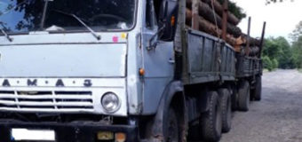 На Волині затримали КамАЗ із деревиною без маркування та документів