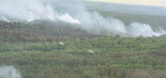 У Чорнобильській зоні гасять пожежу