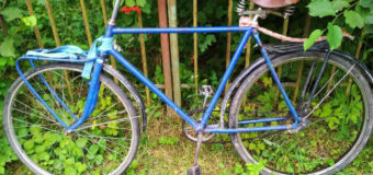 У селі на Волині в жінки викрали велосипед