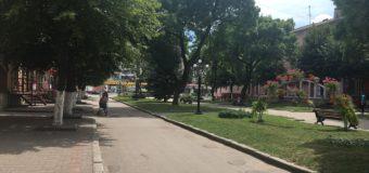У центрі Нововолинська жінку покусала собака