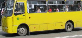 У Луцьку пільговий проїзд у маршрутках матимуть лише школярі