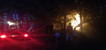 У Рожищі в парку трапилася пожежа