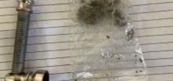 Волинські митники у чоловіка знайшли наркотики