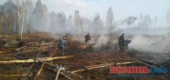 За минулий тиждень рятувальники загасили більше півсотні пожеж [ВІДЕО]