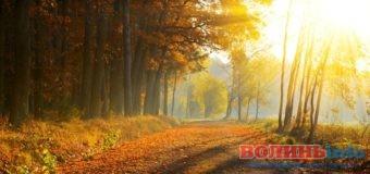 Тиждень: погода у Луцьку та області