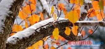 Волинь: прогноз погоди на  листопад(+ПРОГНОЗ)