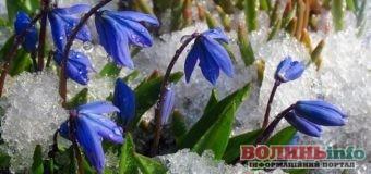 Волинь: У перший тиждень березня погода мінлива