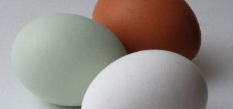 У Луцьку на ринку продають яйця без холестерину