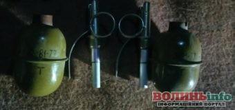 У лучанина виявили арсенал зброї(+ФОТО)