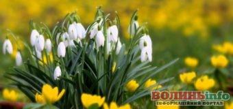 Квітневі свята: Календар визначних дат