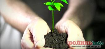 Свята, іменини, народні прикмети 20 квітня – День навколишнього середовища