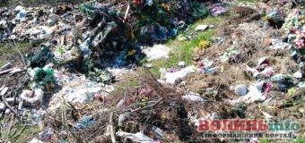 Ліс поблизу Луцька перетворили на смітник