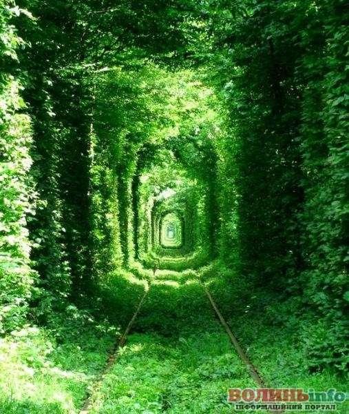 тунель козханя