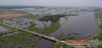 Варто побачити! Відео з дрона – річка Случ, яка вийшла з берегів