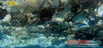 Чорне море – море пластикових пляшок: екологи в шоці