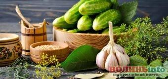 Огірки: смачні рецепти на зиму