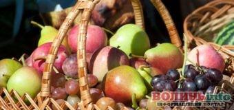 Яблучний Спас: що покласти у кошик на освячення?