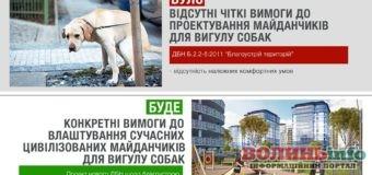 Майданчики для вигулу собак в Україні можуть стати сучаснішими та з більшими вимогами до них