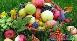 Чи можна їсти дозрілі яблука, не чекаючи Яблучного Спаса?