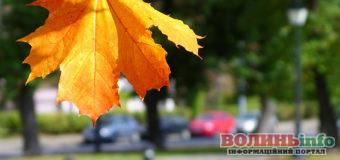 1 вересня: яке сьогодні свято?