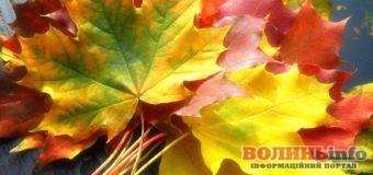 18 жовтня: яке сьогодні свято?