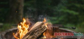 В Україні оголошено пожежну небезпеку: що заборонено робити