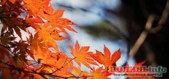 21 жовтня: яке сьогодні свято?