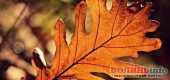 2 жовтня: яке сьогодні свято?