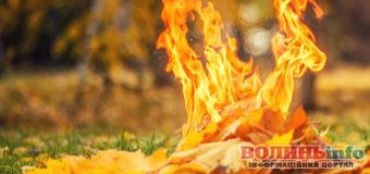 Еколог: викиди зі спаленого листя у 350 разів гірші за сигарету
