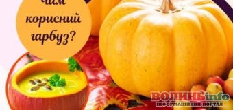 Користь гарбуза для вашого здоров'я: що потрібно знати