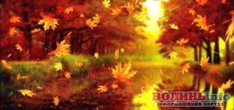 19 листопада – яке сьогодні свято?