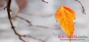 Прогноз погоди на 15 листопада