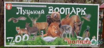 Луцький зоопарк змінює графік роботи