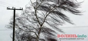 Сильний вітер і зливи: в ДСНС попередили про небезпеку