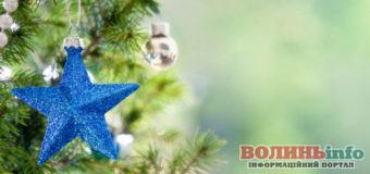 Чи можна замінити новорічну ялинку?