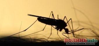 Тропічну малярію зафіксували на Рівненщині