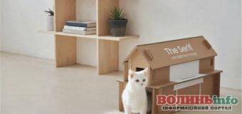 Samsung представив нову упаковку для телевізорів: з неї можна зробити будиночок для кота