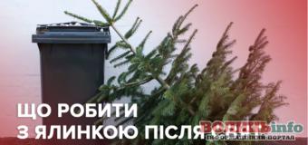 Доля викинутої ялинки: куди діваються новорічні красуні?